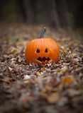 Spooky pumpkin on a path in leaves Stock Photos