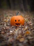 Spooky pumpkin on a path in leaves. A spooky pumpkin on a path in leaves Stock Photos