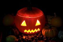 Spooky pumpkins Stock Image