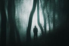 A spooky silhouetted, hooded figure with glowing eyes in a dark forest. With a grunge muted edit. stock images