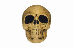 Spooky Skull Royalty Free Stock Images