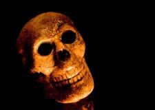 Spooky skull head stock photography