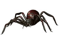 Spooky spider 1. 3D render of a monster spider Stock Photography