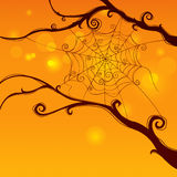 Spooky spider web Royalty Free Stock Image