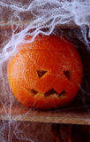 Spooky spider web covered jack-o-lantern Royalty Free Stock Photography