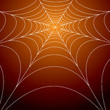 Spooky spiders web Royalty Free Stock Photography