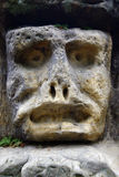 Spooky Stone Face Royalty Free Stock Image