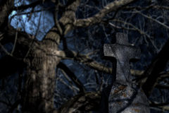 Spooky tombstone at night in front of a weeping willow. Generations old tombstone with a cross on top in focus at night in front of a conveniently placed weeping royalty free stock image