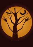 Spooky Tree Stock Photos