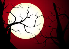 Spooky trees. Abstract vector illustration of spooky tree silhouettes in the moonlight Royalty Free Stock Photo