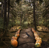 Spooky Trees And  Pumpkins Royalty Free Stock Photo