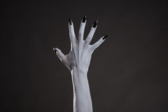 Spooky white hand with black nails Stock Image