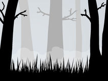 Spooky Woods Royalty Free Stock Images