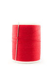 Spool of red thread and needle Stock Image