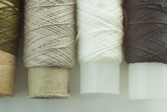 Spool of thread four colors Stock Photos