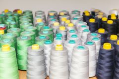 Spool of thread for sewing Stock Image
