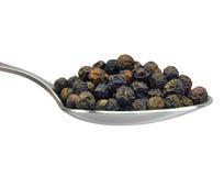 Spoon of black pepper grains, macro closeup Stock Images
