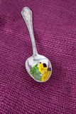 Spoon with blossom Stock Photos