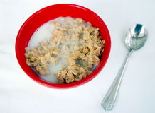 Spoon and bowl of oatmeal Royalty Free Stock Photos