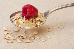 Spoon of cereal with raspberry Royalty Free Stock Image