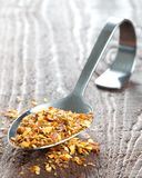 Spoon with chili seeds Stock Photos