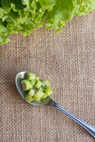 Spoon Chilli. A spoon pick chilli under sackcloth background Royalty Free Stock Photos