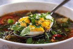 Spoon with chopped egg and greens lies on the surface of vegetable soup. Closeup Stock Images
