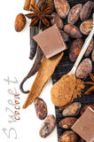 Spoon with cocoa powder and spices Royalty Free Stock Photo
