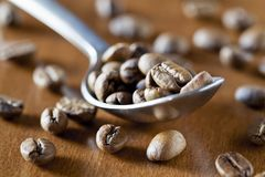 Spoon of Coffee Beans Stock Photos