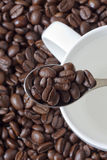 Spoon and Coffee Beans Stock Images