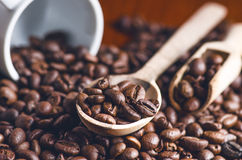 Spoon of coffee beans. Background. Energy. Raw coffee beans. Grained product. Hot drink. Close up. Harvesting. Natural background. Lifestyle. Coffee break in a Royalty Free Stock Photography