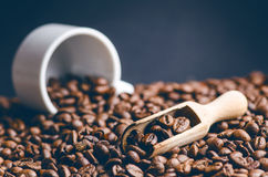 Spoon of coffee beans. Background. Energy. Raw coffee beans. Grained product. Hot drink. Close up. Harvesting. Natural background. Royalty Free Stock Photography