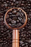 Spoon of coffee Stock Image