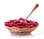 Spoon in cranberries on the plate isolated Royalty Free Stock Photo