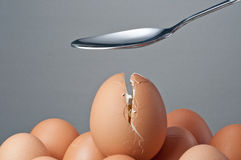 Spoon creak an egg Royalty Free Stock Photography