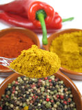 Spoon with curry. A spoon with curry powder and some other spices royalty free stock photo