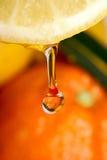 spoon cytrynowy Obrazy Royalty Free