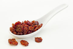 Spoon of dried cranberries Stock Photos