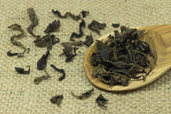 Spoon of dried tea leaves on sack Royalty Free Stock Image