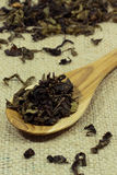 Spoon of dried tea leaves Stock Images