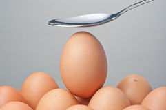 Spoon and egg Royalty Free Stock Image