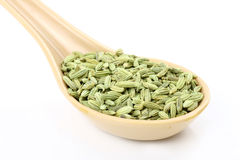 Spoon of fennel seeds Stock Photos
