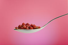 Spoon filled with rose peppers Stock Image