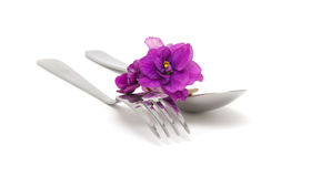 Spoon and fork with violet Royalty Free Stock Images