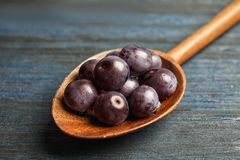 Spoon with fresh acai berrie. S, closeup royalty free stock image
