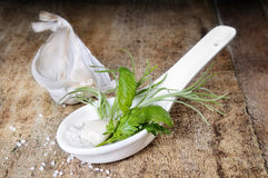Spoon full of fresh herbs Royalty Free Stock Photos