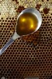 Spoon full of honey on honeycomb Stock Photos