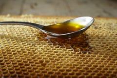 Spoon full of honey on honeycomb Royalty Free Stock Photography