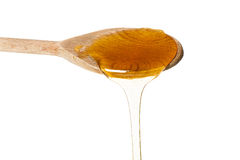 A spoon full of honey Royalty Free Stock Photography