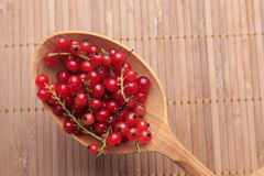 Spoon full of red currants Royalty Free Stock Photos